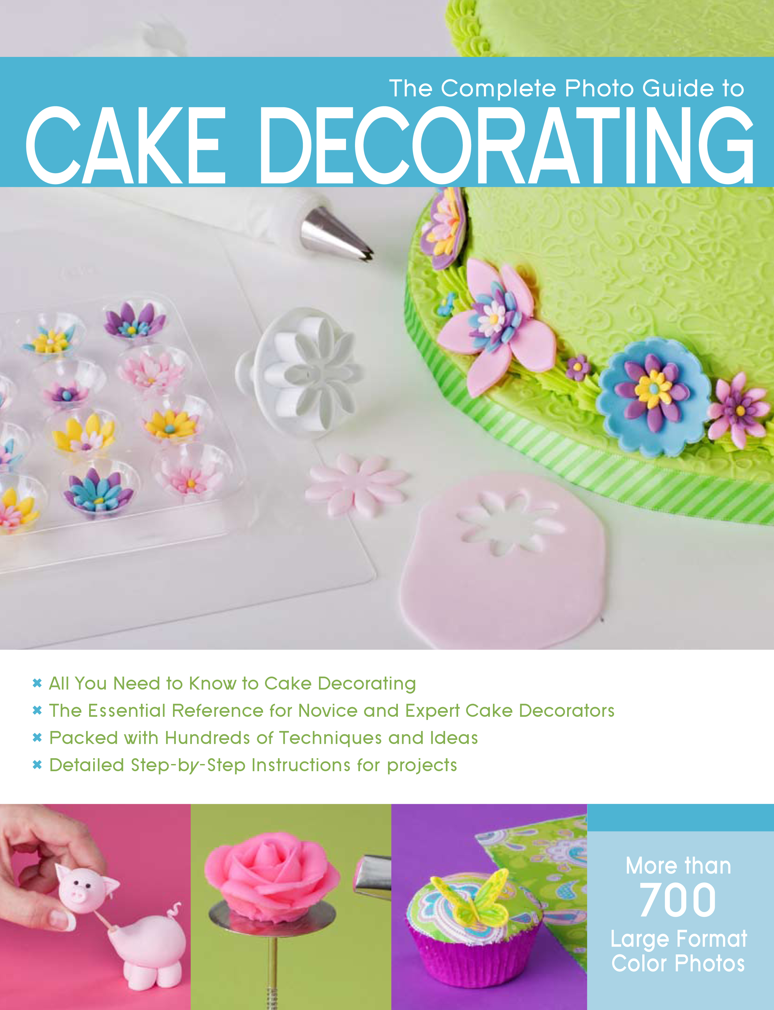 cake decorate | Autumn Carpenter\'s Weblog